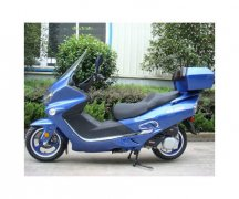2009 Other Roadster Touring Moped 250cc